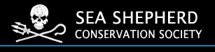Click to learn more about the Sea Sheppard charity organization!