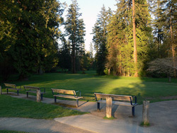 Central Park - Burnaby British Columbia