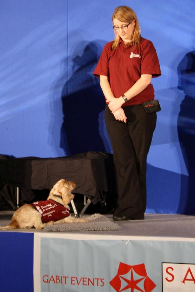 AT5 Hearing Dogs for the Deaf
