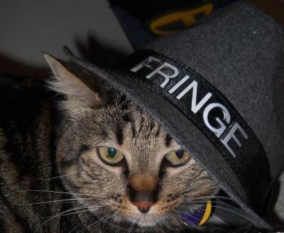 Post SDCC 2012 - Cat Fringe Fedora Event!