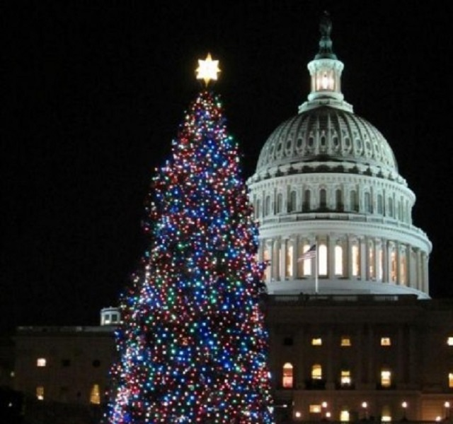 US Capital Christmas Tree