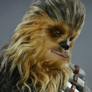 Click to visit and follow Peter Mayhew on Twitter