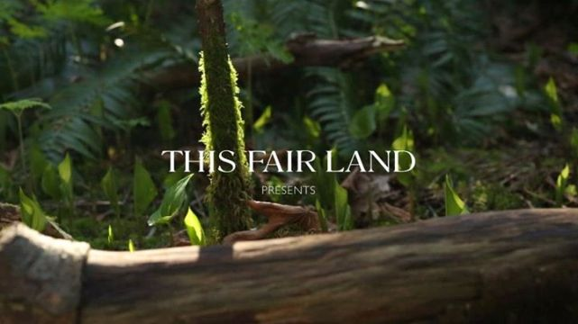 This Fair Land Presents banner - Click to learn more at the official web site!